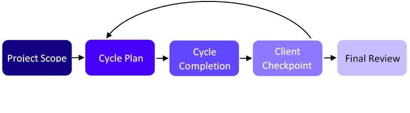 Schematic diagram illustrating the project life cycle in Adaptive Project Management