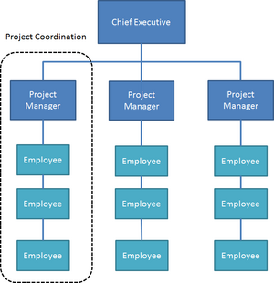 Projectized organizational structureAKD.png