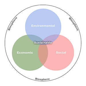 environment development and sustainability a relationship Environment and development- voli - environment and future of the environment and of sustainable development depends on relationship between economic.